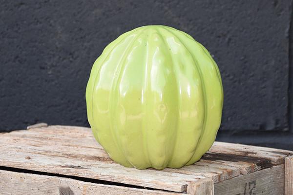 Ceramic  'Parodia' Cactus Series -Lime