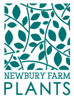 Newbury Farm Plants