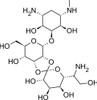 Hygromycin B Solution (50 mg/ml in PBS Buffer)