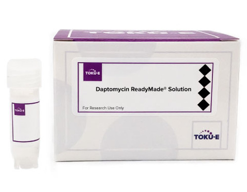 Daptomycin ReadyMade™ Solution
