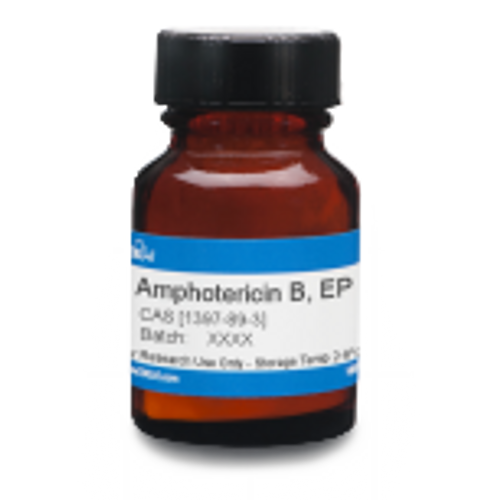 Amphotericin B, EP
