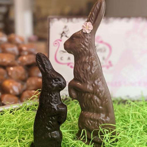 Standing Bunny**