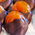 Whole apricots, candied and half dipped in dark chocolate