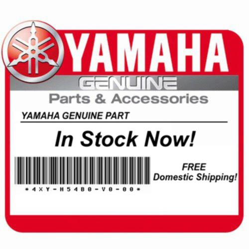 Yamaha OEM Covered in Rust. Wave Washer QTY 2 90206-15021-00 Qty 2
