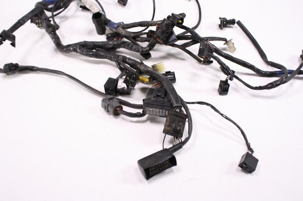 07 Triumph Tiger 1050 Main Wiring Wire Harness Loom