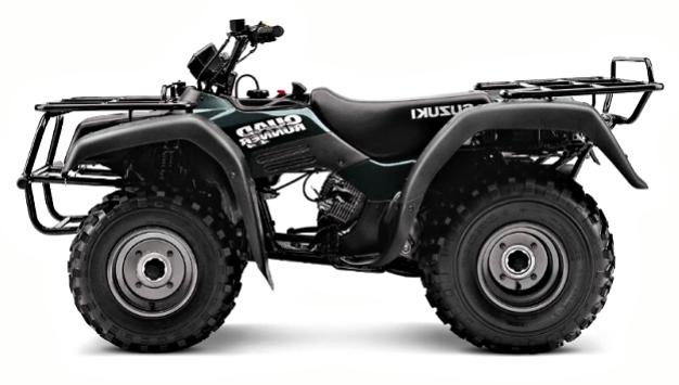 QuadRunner 250
