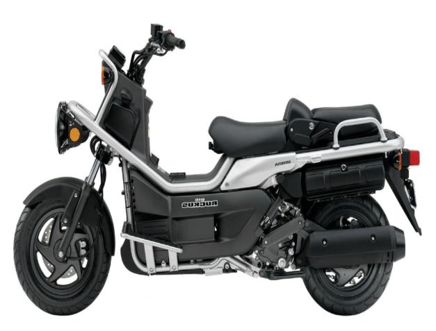 Ruckus 50cc