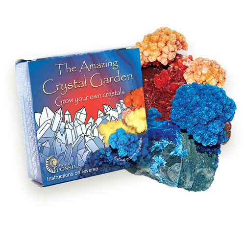 The Amazing Crystal Garden - Grow your own Crystals