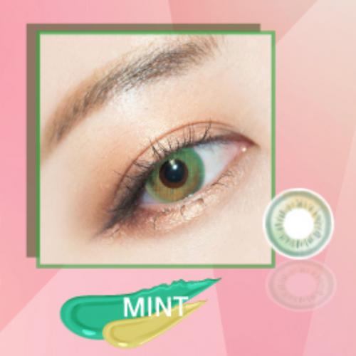 Gradation Mint 14.2 mm ( New )