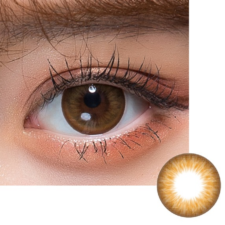I.Fairy Morocco Brown 14.5mm