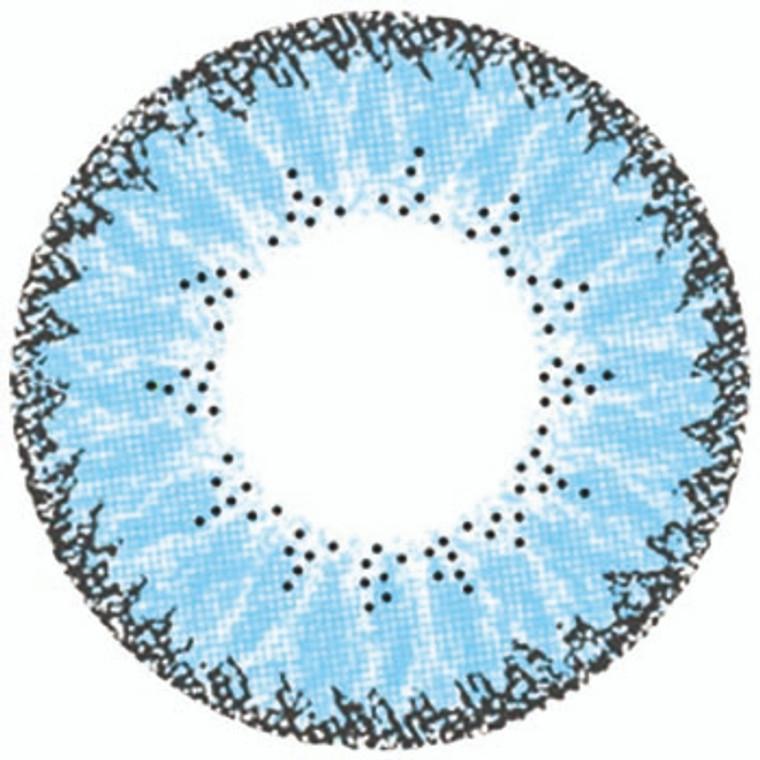 EOS Fay Blue 3 Tone 14.5mm