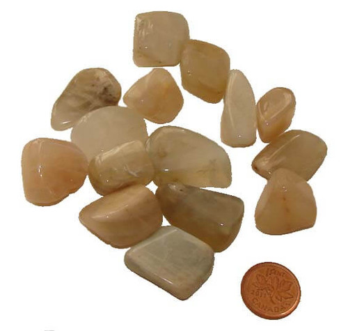 Tumbled Moonstone Stones - size small