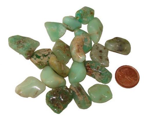 Tumbled Chrysoprase Stones - Teeny