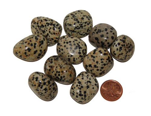 Large Tumbled Dalmation Jasper stones
