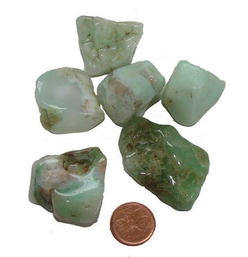 Chrysoprase Tumbled Stones - Extra Large