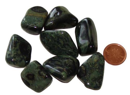 Tumbled Kambaba Jasper  stones - Medium