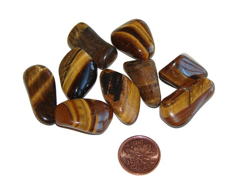 small tumbled gold tigers eye stones