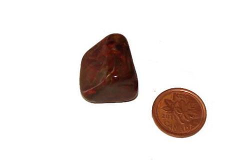 PIetersite tumbled stone - Specimen C