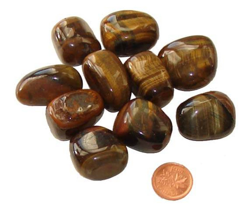 Tumbled Gold Tigers Eye Stones - large