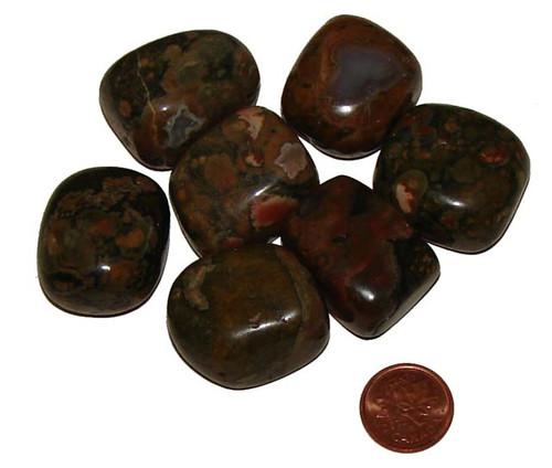 Rhyolite Tumbled Stones - size XX Large
