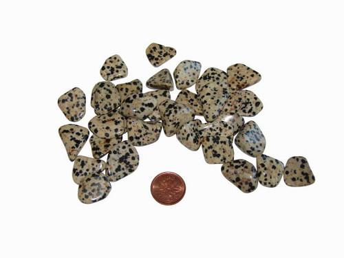 Small tumbled Dalmation Jasper stones