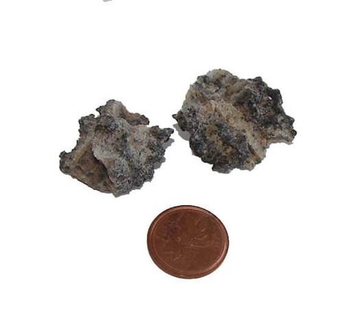 Fulgurite Stones - 3 grams