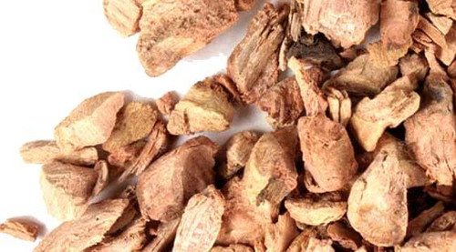 Red Root dried herbs