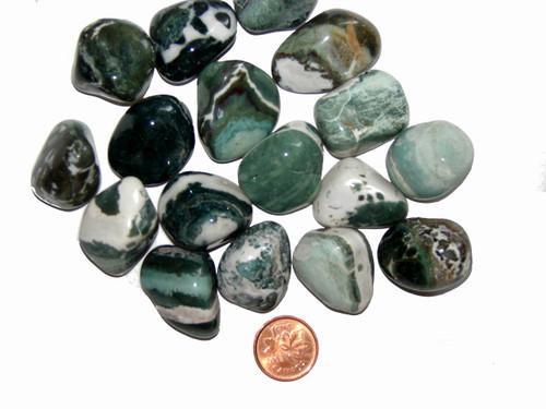 Tumbled Green Sardonyx stones - size medium