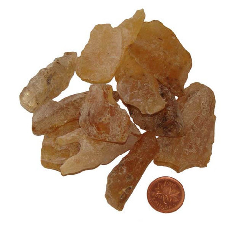Natural Copal Amber - Size Small