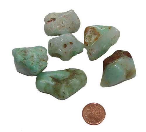 Chrysoprase  tumbled stones - size Large