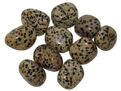 Dalmation Jasper encourages ecological awareness - Free info on healing meanings and how to use with purchase – Free shipping over $60.