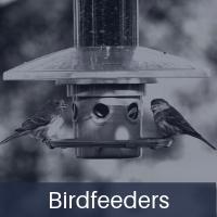 birdfeeders.jpg