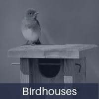birdhouses.jpg