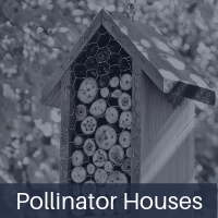 pollinator-houses.jpg