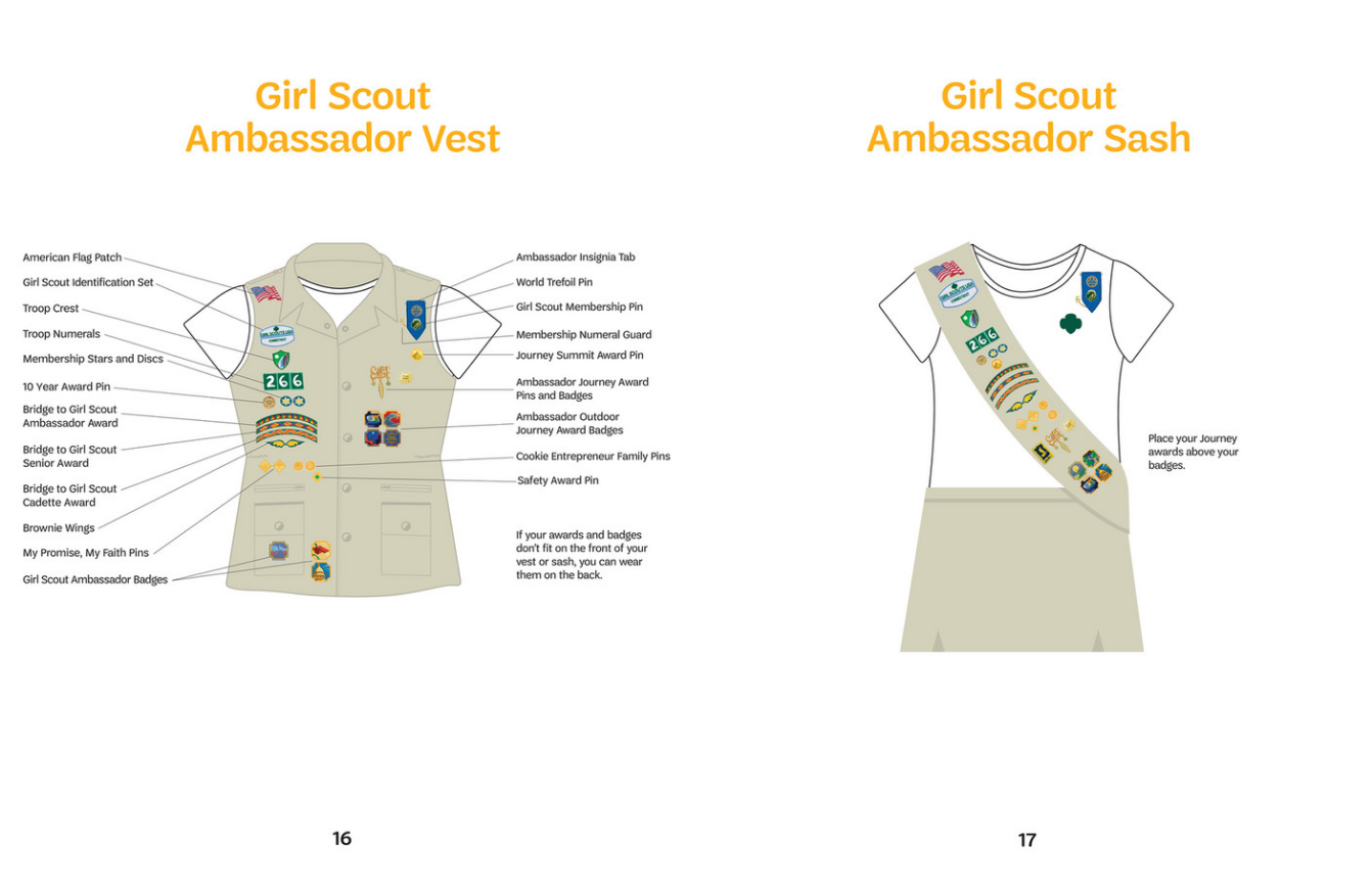 screenshot-2021-07-29-at-12-28-24-girl-scouts-of-the-usa-pins-badge-placement-diagram-booklet-page-16-17.png