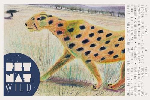 Viña Echeverria 'Wild' Pet Nat 2020, Central Valley, Chile