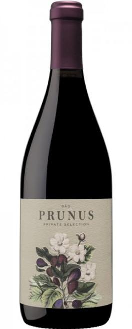 Gota Wine 'Prunus' 2017, Dão, Portugal