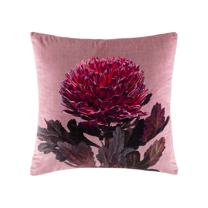 KAS Hope Wine Square Filled Cushion | My Linen