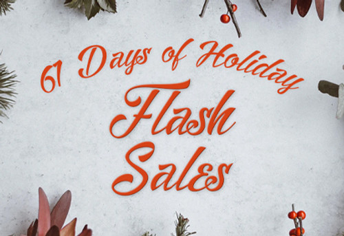 61 Days Of Holiday Fash Sales!