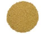 Organic Sucanat Sugar - 50 Lb