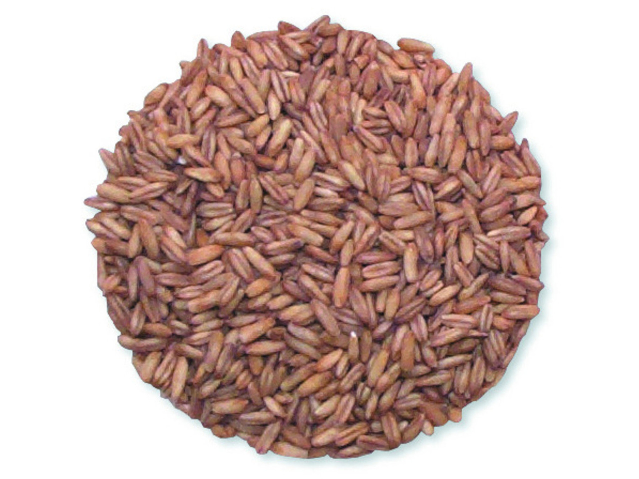 Whole Oat Groats - 50 Lb