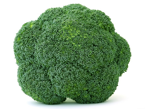 Broccoli 'Cezar' (Brassica Oleracea L.) Vegetable Plant Heirloom, 300-340 Seeds