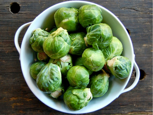Brussel Sprouts 'Groninger' (Brassica Oleracea L.) Vegetable Heirloom, 260-310 Seeds
