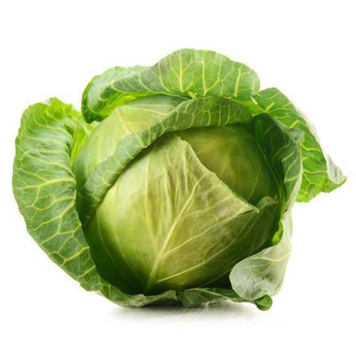 Cabbage 'Golden Acre' (Brassica Oleracea) Vegetable Plant Heirloom, 100 Seeds