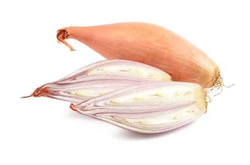 Onion 'Tosca' (Allium Cepa) Vegetable Plant Heirloom, 500-900 Seeds