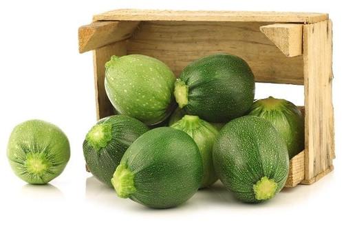 Zucchini 'Di Nizza' (Cucurbita Pepo) Vegetable Plant Heirloom, 12-16 Seeds