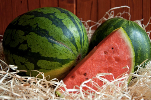 Watermelon 'Sugar Baby' (Citrullus Lanatus) Fruit Plant Heirloom, 10 Seeds