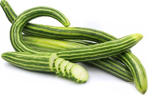 Cucumber 'Armenian Yard Long' (Cucumis Sativus) Vegetable Plant Heirloom, 20 Seeds