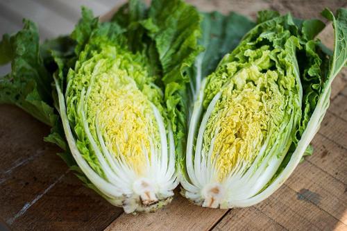Cabbage Chinese 'Granaat' (Brassica Oleracea L.) Vegetable Plant Heirloom, 500-600 Seeds
