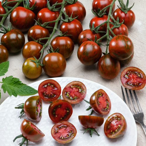 Tomato 'Tigrino' (Lycopersicon Esculentum) Indeterminate Vegetable Heirloom, 40-50 Seeds